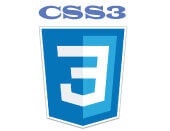 CSS3 responsive website development